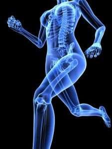 Importance of Bone Health