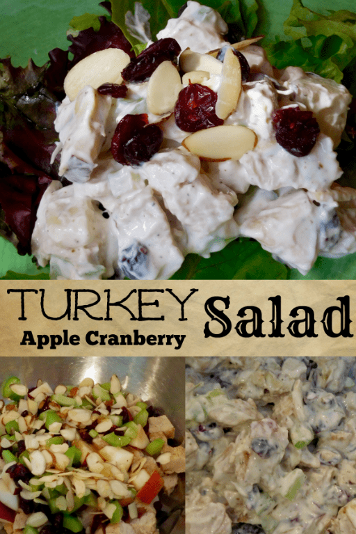 Healthy Recipe: Turkey Apple Cranberry Salad