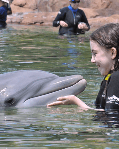 Family Travel Review: A Day of Exploration at Discovery Cove