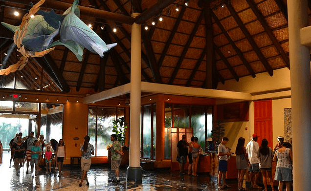 discovery cove check in lobby