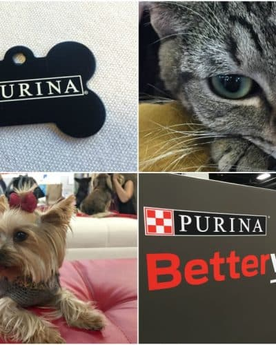 5 Things I Learned at the Purina  Better With Pets Summit