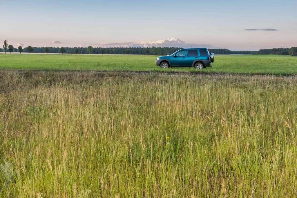 car in grass