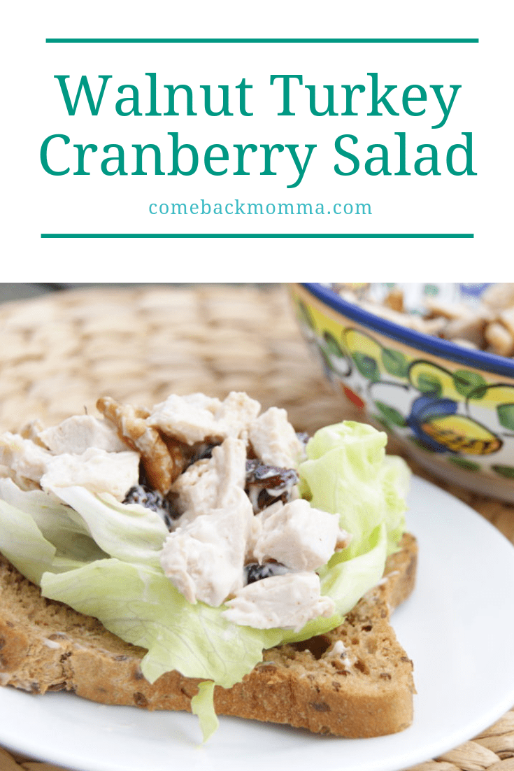 turkey cranberry salad on bread