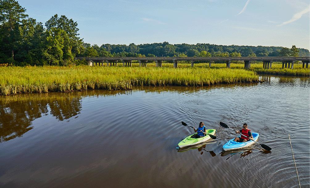 people kayaking at hog island